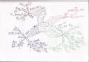読書マインドマップ:メディア・バイアス