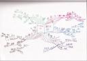読書マインドマップ:ビジネス力の磨き方
