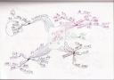 読書マインドマップ:人が集まる !行列ができる !講座、イベントの作り方