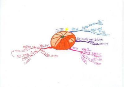 読書マインドマップ:チャンスがやってくる15の習慣